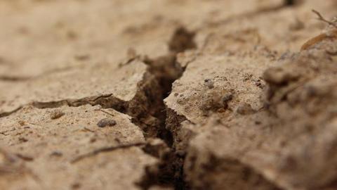 Wat als de bodem uitdroogt